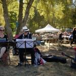 Musiciens, fête de la Montagne Limousine